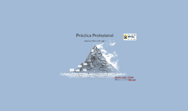 Práctica Profesional