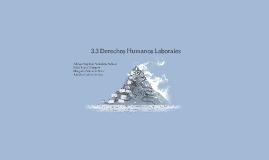 Copy of 3.3 Derechos Humanos Laborales
