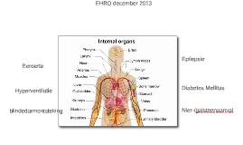 EHBO december 2013
