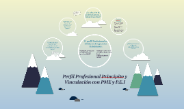 Perfil Profesional Principito y Vinculación con PME y P.E.I