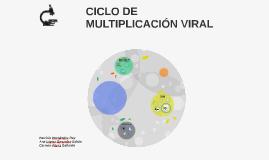 CICLO DE MULTIPLICACIÓN VIRAL