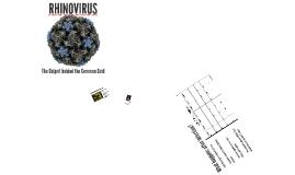 RHINOVIRUS AKA The Common Cold