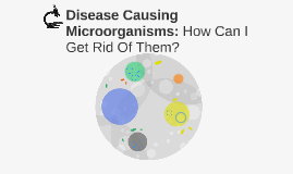 Disease Causing Microorganisms: How Can I Get Rid Of Them?