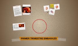 PRIMER TRIMESTRE EMBARAZO