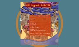 Copy of Copy of Copy of Copy of Copy of PPA primer  parcial