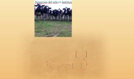 Deteccion del celo en bovinos