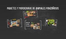 Copy of PIQUETES Y MORDEDURAS DE ANIMALES PONZOÑOSOS