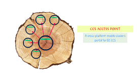 CCS ACCESS POINT
