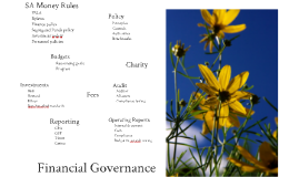 Financial Governance