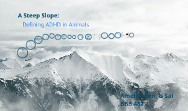 Copy of ADHD Animal Model Presentation