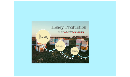 Copy of Honey Production