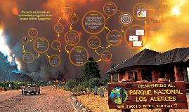 Efecto de un incendio en comunidades vegetales de un bosque Andino Patagónico
