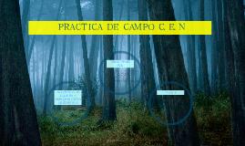 Copy of PRACTICA DE CAMPO C.E.N