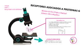 RECEPTORES ASOCIADOS A PROTEíNAS G