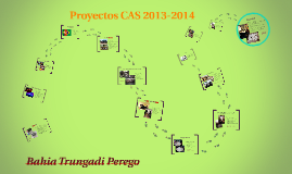Proyectos CAS 2013-2014