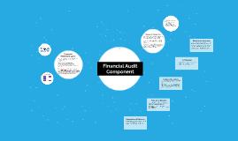 Financial Audit Component