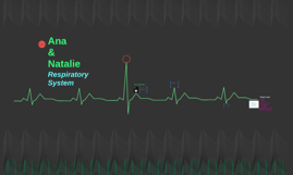 Ana & Natalie Respiratory System