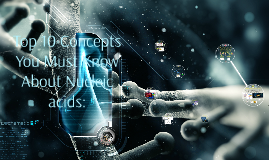 Top 10 Concepts You Must Know About Nucleic Acids