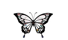 Enable_Enhance_Transform