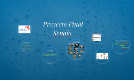 Copy of Proyecto Final