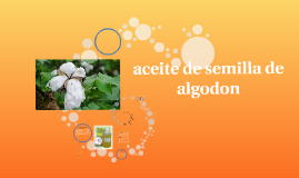 Copy of aceite de semilla de algodon