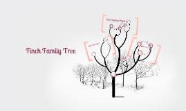 Copy of Finch Family Tree