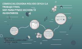 NIIF PARA PYMES INVENTARIOS POLVOS CEYCA S.A