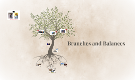 Balances and Branches