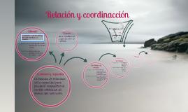 Copy of tema de cono 2