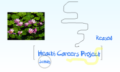 Health Careers Project