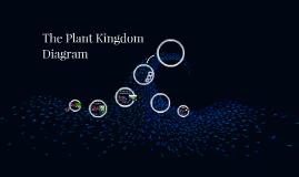 the plant kingdom diagram