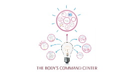 Copy of THE BODY'S COMMAND CENTER