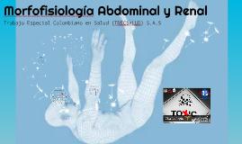 Morfofisiología Abdominal