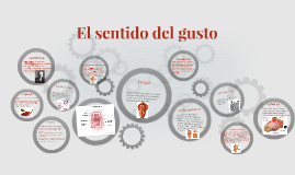 Copy of El sentido del gusto
