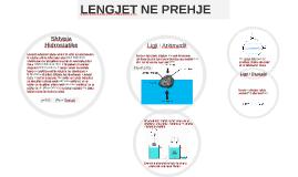 Copy of Copy of Shtypja Hidrostatike