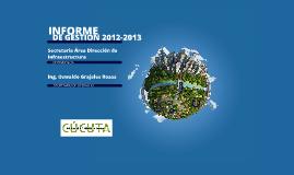 INFORME GESTION 2012-2013