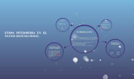 ETAPA INTERMEDIA EN EL NUEVO SISTEMA PENAL
