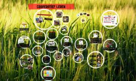 Copy of Cooperatief leren