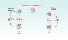 Zuhaitzaren metodologia