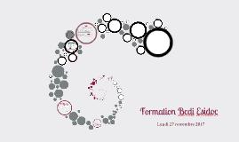 Formation Bcdi Esidoc