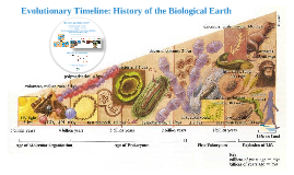BS104 Week 3: Historical Context of Evolution and Speciation