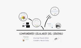 COMPONENTES CELULARES DEL CEREBRO