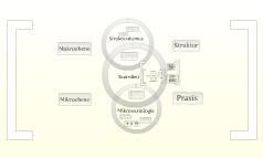 Bourdieu - Struktur Habitus Praxis