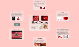 Bio Blood Clotting Presentation