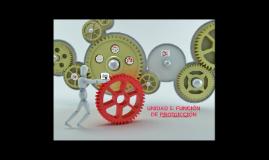 UNIDAD 5: FUNCIÓN DE PRODUCCIÓN