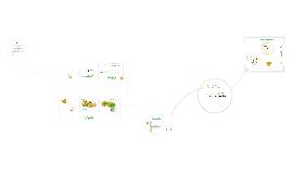 Copy of Plan de negocios para la producción y comercialización de pulpa de pepino dulce en la ciudad de Quito