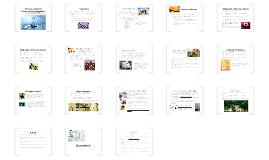 Copy of Portfolio Evidence 2 PP Presentation Content Knowledge