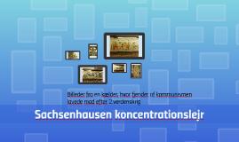 Sachsenhausen koncentrationslejr