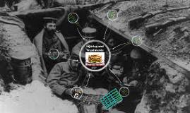 Copy of WW1 Injuries