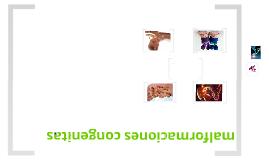 Copy of Copy of Copy of malformaciones congenitas
